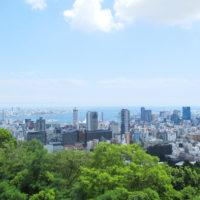 ビーナスブリッジから見た神戸市街地 3