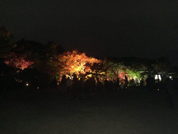 須磨離宮公園 紅葉 7