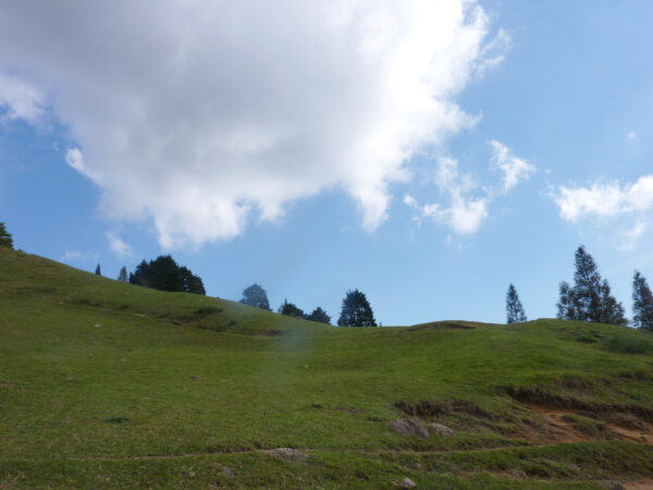青空と草原 1