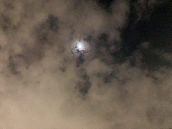 今夜月の見える丘に 1