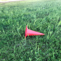 草の上のパイロン 1