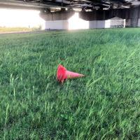 草の上のパイロン 2