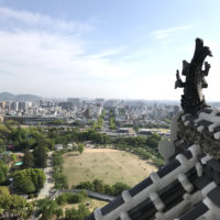 姫路城の鯱(しゃちほこ) 2