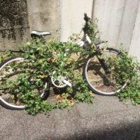草に食べられた自転車