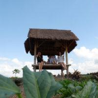 畑と休憩所 2