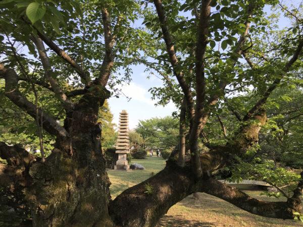 姫路城の庭園 1