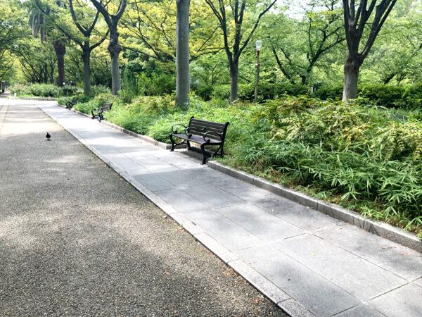 公園のベンチ 3