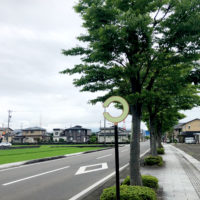 視力検査の形した道路の反射板