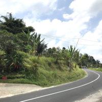 バリの道 1
