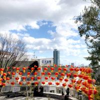北野町広場の春節祭中国ランタン 4