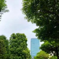 植物の緑とビル