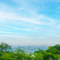 緑と空と街並み