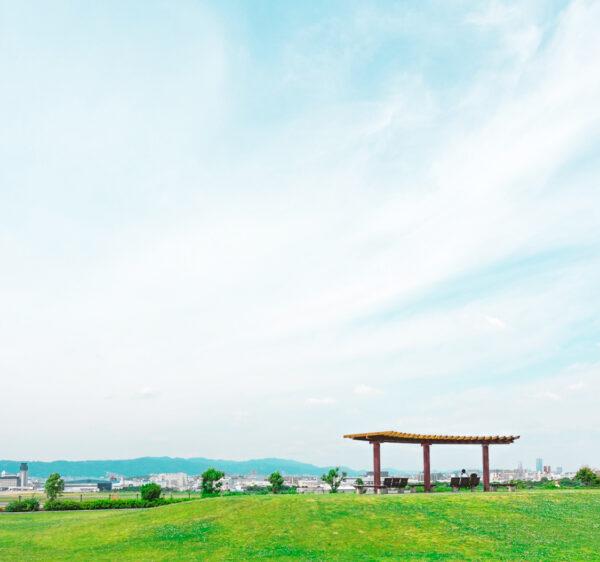 緑の丘と自然の景色 1